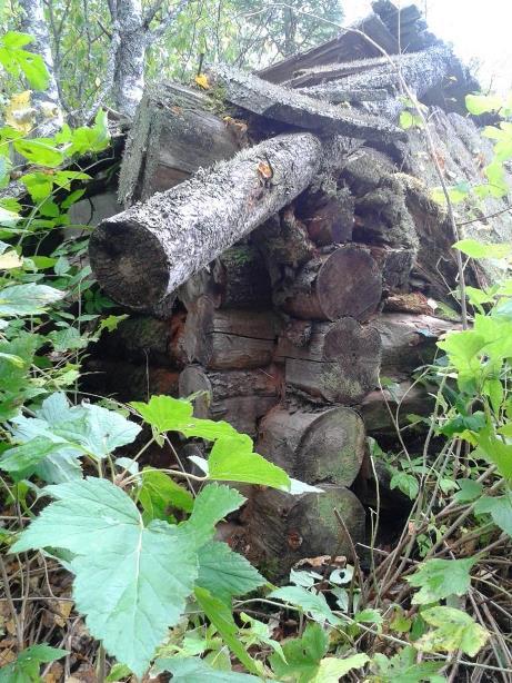 13.09.2018, бывший поселок лесозаготовителей Шиес, рядом с СЖД. Одно из немногих сохранившихся строений.