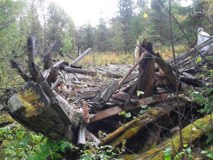 13.09.2018, бывший поселок лесозаготовителей Шиес, рядом с СЖД. Остов одного из не вывезенных щитовых домов.
