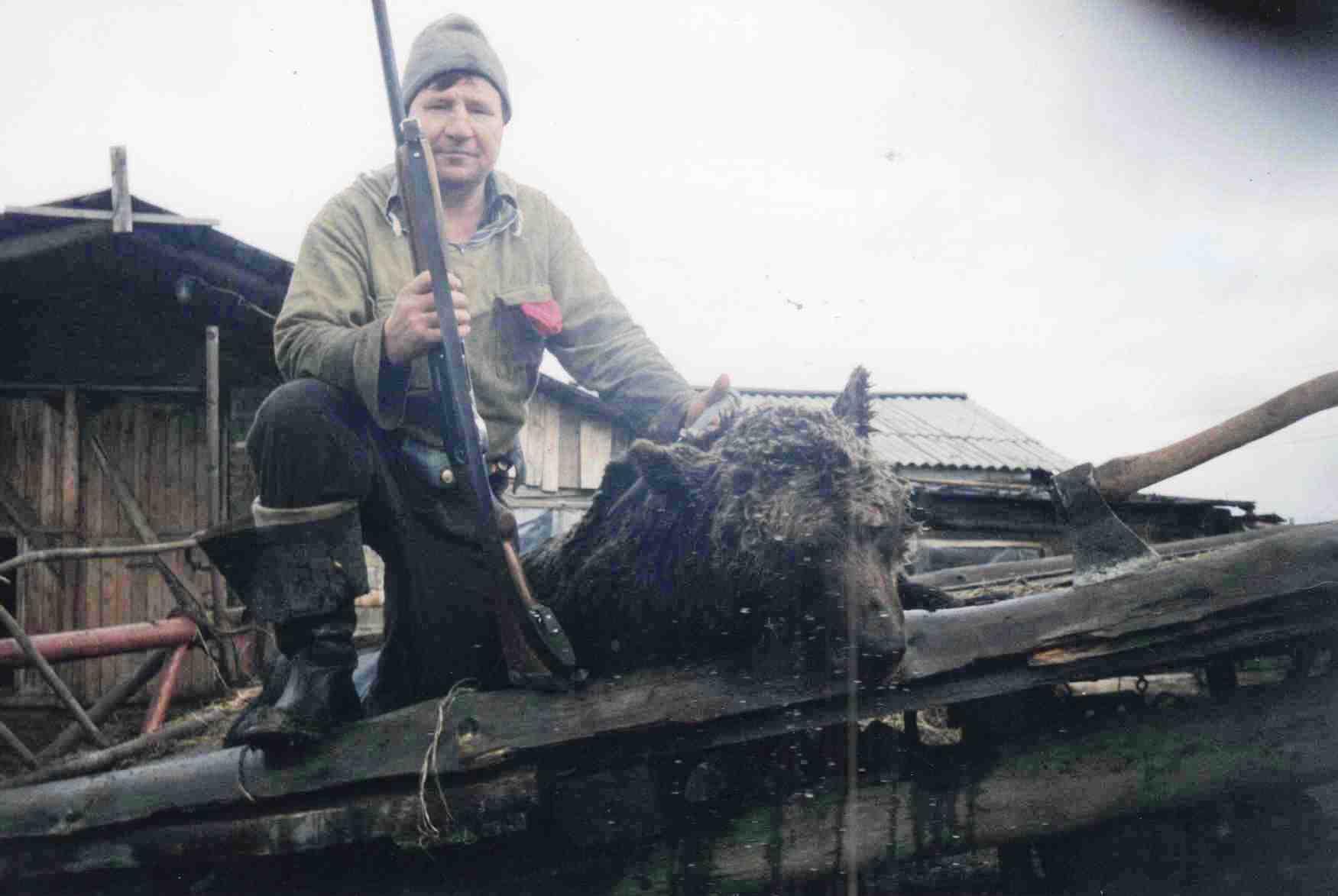 1998 год, Доника А.Д., д. Берег, медведь убит из ружья, вес 250 кг, возраст 5 лет, 30 литров медвежьего жира