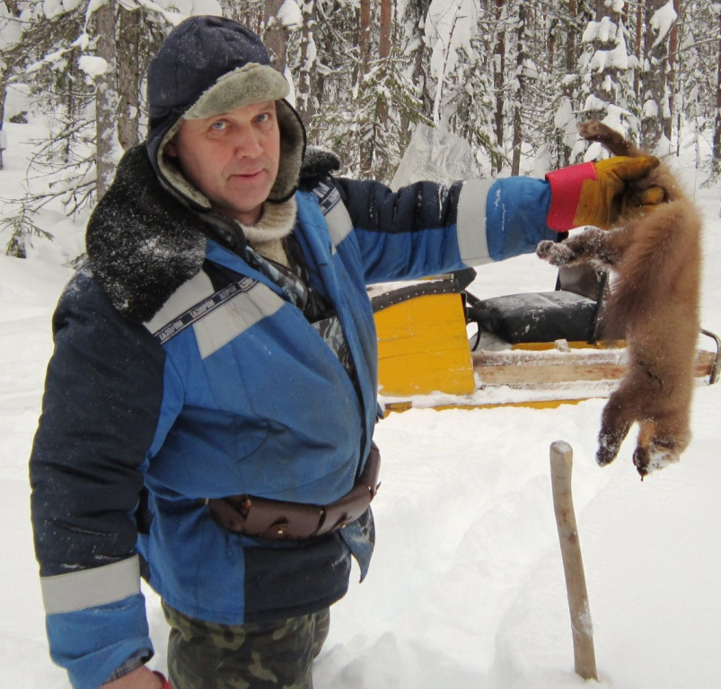 2014, 15 февраля, Дорофеев Ю., добыча - куница.