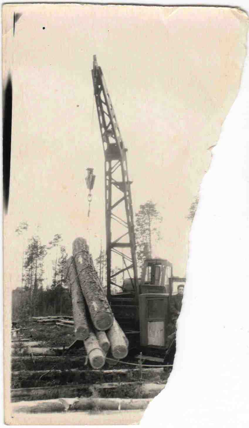 Автомобили ЗИС на погрузке и вывозке леса, п.Вандыш, 1950-е (1)