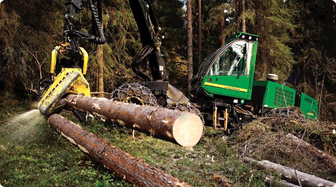 Лесной филиал Группы Илим