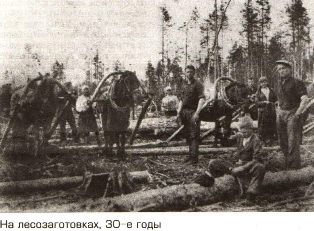 "На лесозаготовках, 1930-е года. ""Маяк"" от 11.09.2015. Конная вывозка леса."