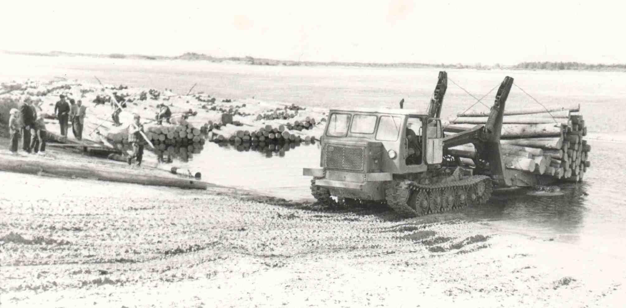 Трактор сталкивает лес для сплава по реке Вычегда.